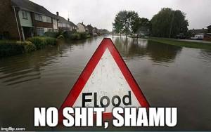 The Befuddling Flood